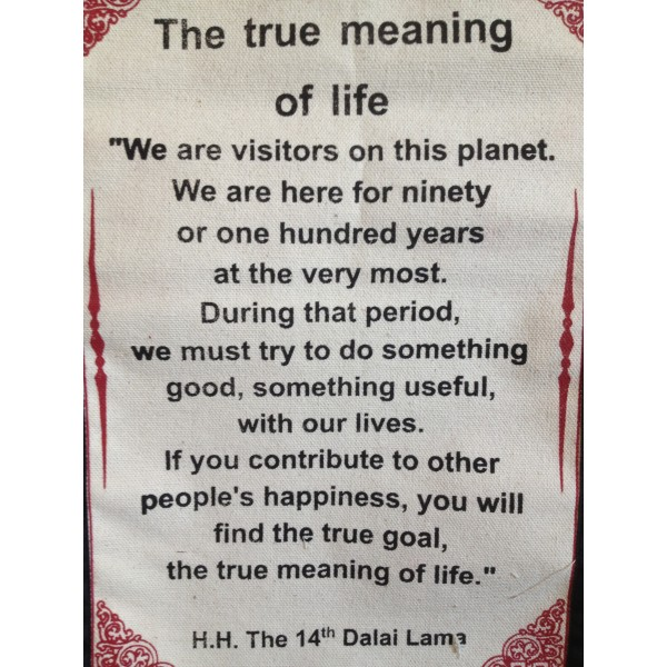 54328-true-meaning-life-quotes